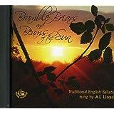 Bramble Briars and Beams of the Sun