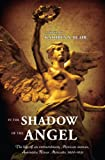 Image de In The Shadow Of The Angel (English Edition)