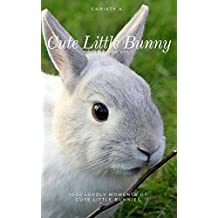 Cute Little Bunny Photo Book Vol.1: 100+ lovely moments of cute little bunnies (Bunny Photo Book 01) (English Edition)