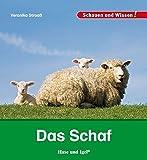 Das Schaf: Schauen und Wissen!