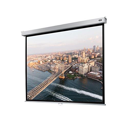 celexon Rollo-Leinwand Professional Plus | Format 4:3 | Nutzfläche 240 x 180 cm | Beamer-Leinwand geeignet für all Projektortypen | Full-HD und 3D-Leinwand | Einfache Installation & gute Planlage