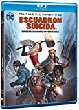 Suicide Squad: Hell to Pay (ESCUADRÓN SUICIDA: CONSECUENCIAS INFERNALES -, Spain Import, see details for languages)