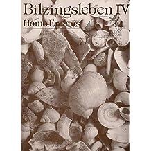 Band 44: Bilzingsleben IV - Homo erectus - seine Kultur und seine Umwelt