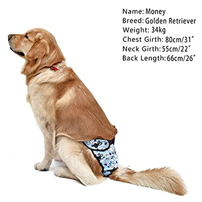 PAWZ Road Pet Recyclable Diaper Dog Sanitary Pantie For Female Dogs in Season and Male Dogs Training Urination and… 2