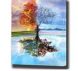 AZLIXLH DIY Framed Ölgemälde Durch Zahlen Blumen Bilder Leinwand Gemälde Für Wohnzimmer Wandkunstausgangsdekor 40X50 cm Zlhxq-66091
