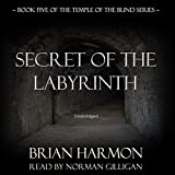 Books : Secret of the Labyrinth: The Temple of the Blind, Book Five