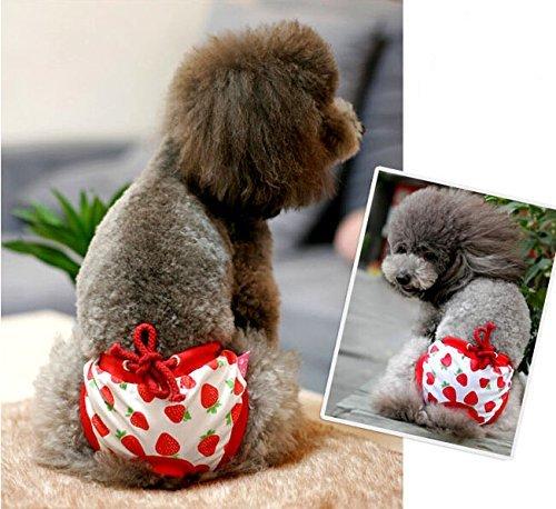 Bild: Namsan Puppy Hund Windel Physiologische Panty Pantie fuer Maedchen HundeRedExtra grosse Taille 17205inch