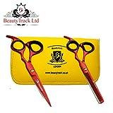 'BeautyTrack 6profond Noir Vis Fixer coiffeur édition limitée de coupe des cheveux forbicidel Barbier et Salon de poursuivie Sécateur Set + cas rouge...