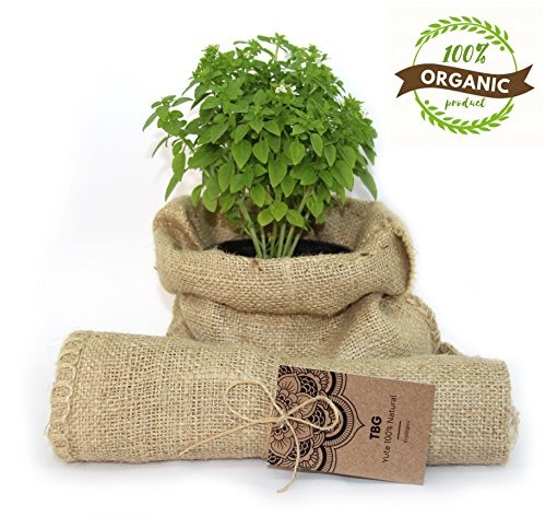 Jutesack 100% natürliche grüne–Pack 3Taschen. Ideal für Party für städtische Küche, Garten, Gemüsegarten und Dekoration Vintage Rustikaler. Ökologischer Handtasche für Gemüse, Organizer (26x 48cm)
