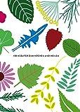 Herbarium: 100 Kräuter ? Geschichte, Wirkung, Verwendung - Caz Hildebrand