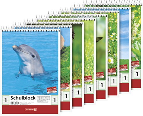 Brunnen 104198101 Schulblock (A5, 40 Blatt, liniert, Lineatur 1, Klasse 1)