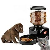 Best Pet Feeders automatique - Dailyinshop 5.5L Automatique Pet Feeder avec Enregistrement de Review