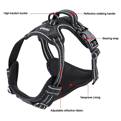 Dog Vest Harness with Leash,Dpower Luxury No Pull Pet Dog Harness 3M Reflective Nylon Lightweight Dog Walking Harness Padded Vest with Breathable Mesh for Outdoor Training Sports Adventure(M, Black)
