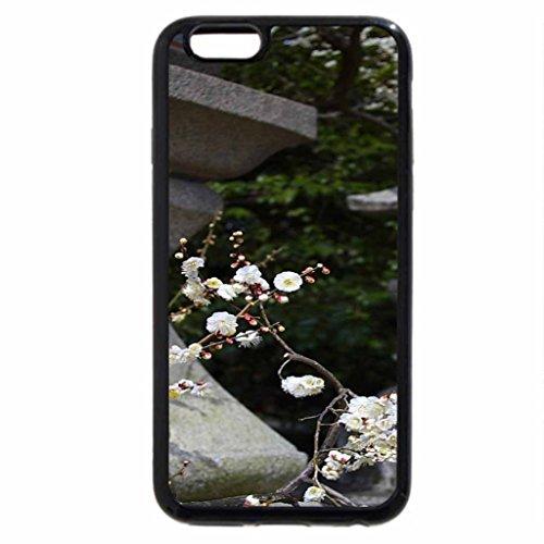 iPhone 6S / iPhone 6 Case (Black) Spring of zen