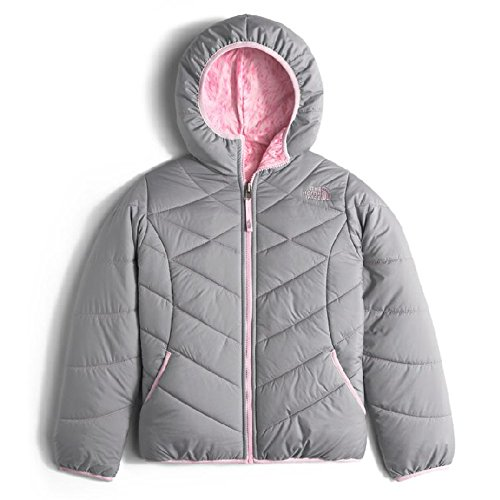 The North Face Kids Girl's Reversible Perrito Jacket (Little Kids/Big Kids) Metallic Silver (Prior Season) Large (Reversible Down Coat)