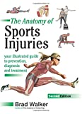 The Anatomy of Sports Injuries: Your Illustrated Guide to Prevention, Diagnosis and Treatment