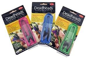 Deadheads Pink Garden und zum Entfernen von verwelkten Blüten Snips