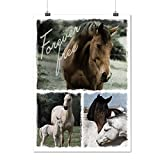 Gratuit Pour toujours Cheval Animal Matte/Glacé Affiche A4 (30cm x 21cm) | Wellcoda