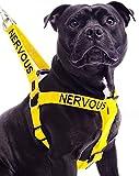 Nervös Gelb Farbe Coded Nylon L-XL Non-Pull-Hundegeschirr (Gib mir Raum) verhindert, dass Unfälle, die durch Warn Sonstige Ihren Hund im Voraus