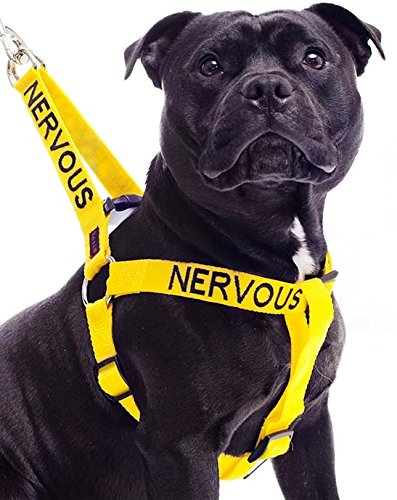 Nervös Gelb Farbe Coded Nylon L-XL Non-Pull-Hundegeschirr (Gib mir Raum) verhindert, dass Unfälle,...