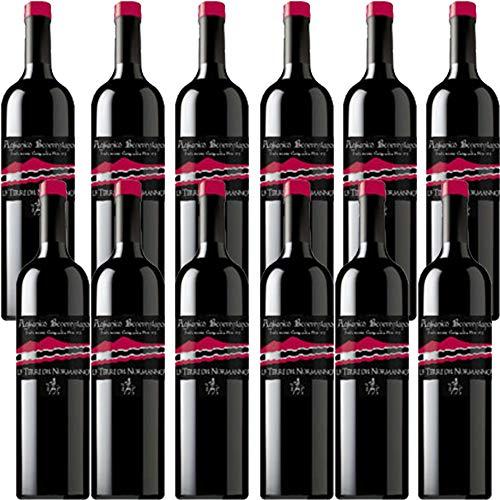 Aglianico del Beneventano | Le Terre del Normanno | 12 Bottiglie 75cl | Vino Rosso Campania | Idea Regalo