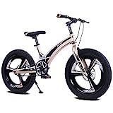 LISI Bicicleta de los niños de aleación de magnesio de 20 Pulgadas Macho y Hembra de montaña Estudiante Freno de Disco de Coche de una Sola Velocidad en Bicicleta para niños,Gold