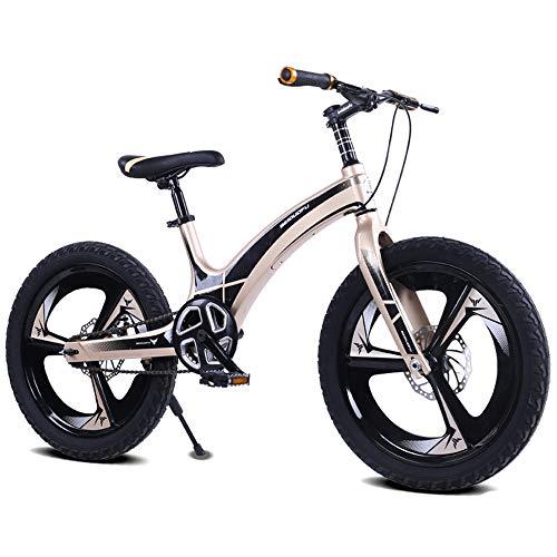 LISI Bicicleta niños aleación magnesio 20 Pulgadas