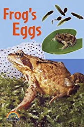 Frog's Eggs (Rainbows Nature) by Alex Ramsay (2005-05-27)