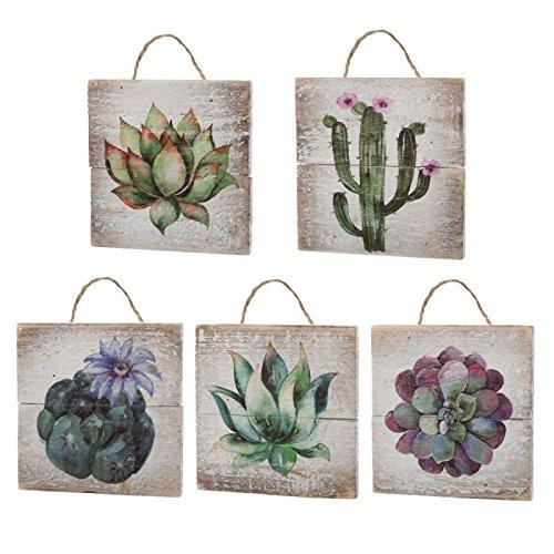 Dcasa - Set 5 Cuadro Abeto Cactus 15x15cm