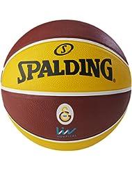 Spalding Ballon Euroleague Galatasaray Liv Hospital Istanbul