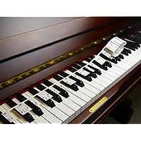 Piano Stickers para Aprender Piano o Teclado, se Pegan en el Piano, Sin Pegamento