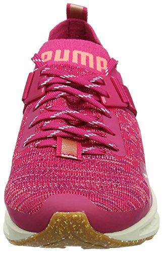 Puma Ignite Evoknit Lo VR, Scarpe Sportive Outdoor Donna Rosa (Love Potion-nrgy Peach-dark Purple)