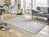 Mint Rugs Design Viskose Teppich Bryon in Relief-Optik/Grau, 160x230 cm
