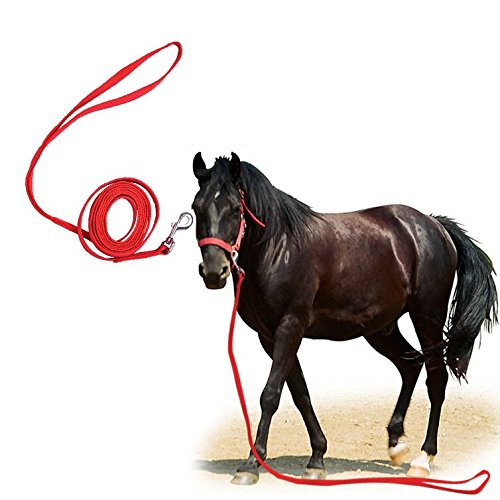 Pueri 3 meters nylon Horse Leading Rope Horse rein equestre forniture Saddleries rosso