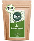 Ortica Foglie di tè (BIO, 250g) // Ortica tè di foglie sciolte - urticae folium - 100% ortica erbe premio organico - L'esperienza di 30 anni di erbe