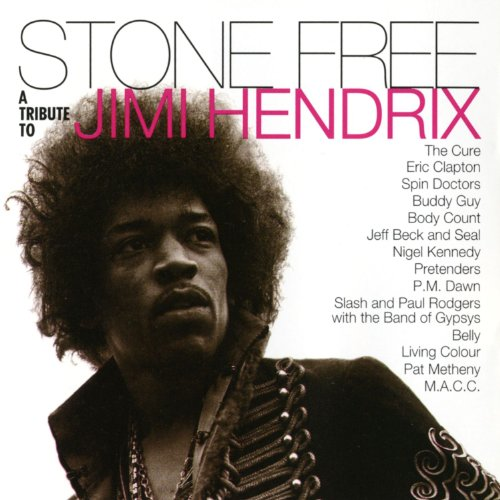 Stone Free: A Tribute to Jimi ...