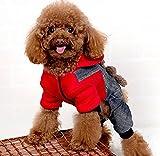 Caldo accogliente cotone Pet Cat dog cappotto orso abbigliamento invernale Fatto di cotone morbido, comodo e caldo Caldo, mantenere il vostro animale domestico caldo in questo inverno Design carino, c' è un orso sul retro, rende molto carino Specific...