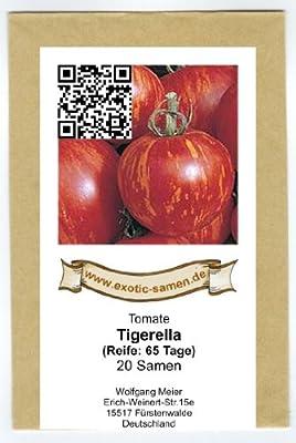 Tigerella - rot-gelb gestreifte Stab-Tomate - alte Sorte - 20 Samen von exotic-samen auf Du und dein Garten