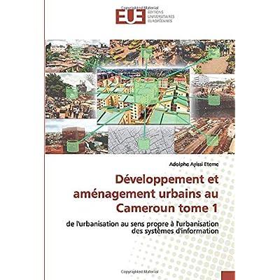 Développement et aménagement urbains au Cameroun tome 1: de l'urbanisation au sens propre à l'urbanisation des systèmes d'information