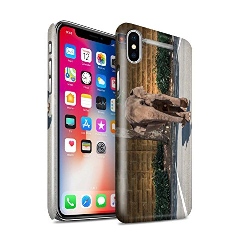 STUFF4 Glanz Snap-On Hülle / Case für Apple iPhone X/10 / Ersten Gang Muster / Vorstellen Kollektion Jaywalking