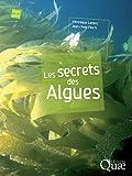 Image de Les secrets des algues