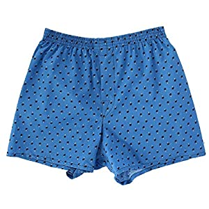 Boxers Fruit of the Loom