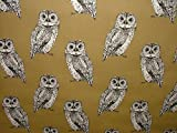 1m Prestigious Textiles Eule Tawny Baumwolle Vorhang