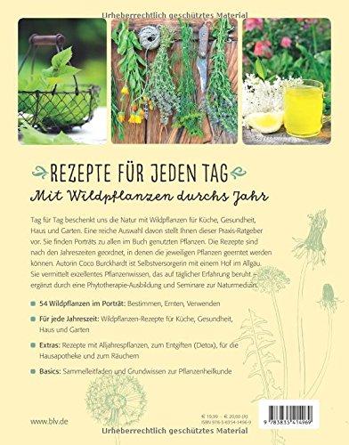 Der Wildpflanzen Praxis-Coach: 100 Rezepte für Küche, Gesundheit, Haus & Garten -