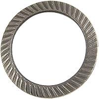 Schnorr de seguridad (Acero Inoxidable A2, forma S (estándar) (20unidades) | Discos de seguridad schnorrsc heiben