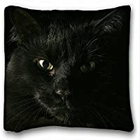 Decorativo Quadrato Throw Pillow Case animali cat