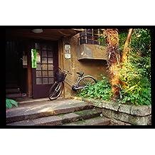 DOJUNKAN Aoyama Apartments2000: DOJUNKAN Aoyama Apartments and Omotesando zelkova tree-lined Reversal color film for prints 1 (Tokyo landscape photos) (Japanese Edition)