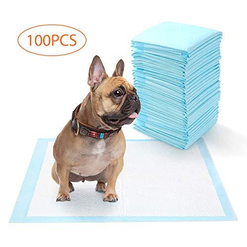 DADYPET Tappetini Igienici per Cani, Tappetini igienici assorbenti per Animali Domestici, Design Ultra-Assorbente a 5 Strati e Base a Tenuta Stagna per Cuccioli, di Grandi Dimensioni 60x60 cm, 100 pz