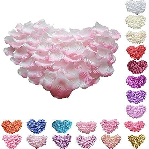 TtS 1000 Seta rosa petali di fiori