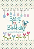Bump to Birthday, Pregnancy & First Year Baby Journal : an award-winning journal / diary to help you hold onto memories of the growing bump, the birth & the first year with your baby (Parent & Child)